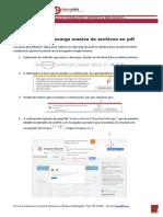 scopus_descarga_pdfs.pdf