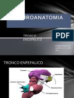 Anatomia Tronco Encefalico (1)