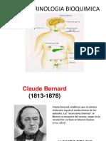 endocrinologia bioquimica