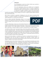 Patrimonio Cultural de Suchitepéquez.docx