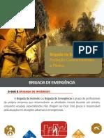 brigadadeemergnciaoficialclc-171110132723.pdf