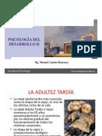 Tema 11 Adultez Tardc3ada Desarrollo Fc3adsico