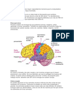 El Cerebro Humano Tiene Mayor Capacidad de Memoria Que La Computadora Más Poderosa Que Se Haya Inventado