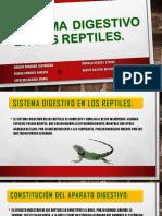 Sistema Digestivo en Los Reptiles