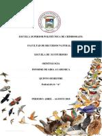 Informe de Ornitologia Final