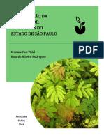 RELATORIO VIVEIROS.pdf