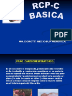 RCP BASICA.ppt