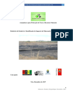 Relatorio Da Identificacao Do Impacto Ambiental