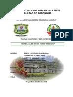 TRABAJO-FINAL-DE-MERCA-OJOOOOOO-ney (1).docx