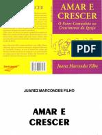 500Amar e crescer.pdf