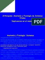 Artropodos_sistemas_vitales_24_abr_2019.pdf