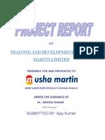 88973448-Usha-Martin-Final-Project.doc