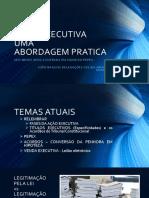 AÇÃO EXECUTIVAUMA ABORDAGEM PRATICA.pdf