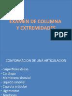 Examen Fisico de Extremidades (MEDICINA)