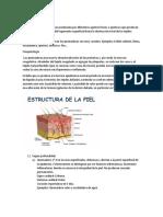 QUEMADURAS 1
