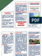 334193898-TRIPTICO-de-La-Energia-Solar.docx