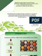 presentación yorbeli.pptx