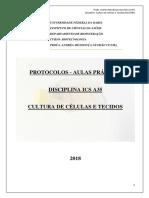 Protocolo - Separação de PBMC e Viabilidade Celular
