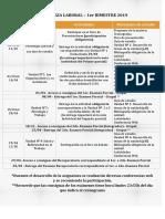 Psicología Laboral - Cronograma 1er bimestre.pdf