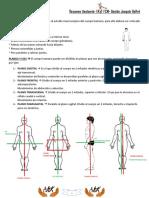 Resumen Anatomia 2015 - Gaston Galfre.pdf