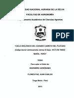 tesis de HUILQUITAS.pdf