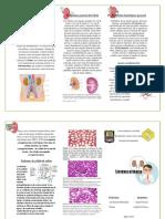 triptico de sistema urinario.docx