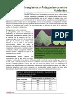 78. Sinergismo y Antagonismo entre Nutrientes.pdf