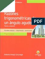 Temas Selectos - R.T DE ANGULOS AGUDOS.pdf
