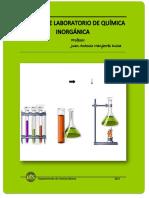 Manual Laboratorio Quimica Inorganica