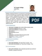 CV Miguel Del Carpio Actualizado