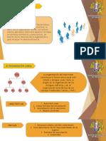 Tipos de organización.pptx