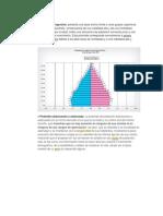 Tipos de Piramides de Poblacion