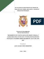 Proyecto Alex Tineo (Doctorado UNMSM)