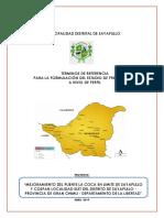 TERMINOS DE REFERENCIA PARA ELABORACION DE PIP PUENTE.docx