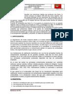 PROYECTO_DE_CAS[1].docx