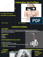 seminariopatologasdelesfago-151212000204.pdf