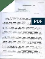 crazy army caixa.pdf
