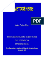 CLASE_GAMETOGENESIS.OBS2012.pdf