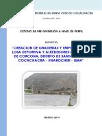 PERFIL CORCONA TP.docx