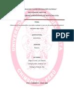 monografia-oficial-biosiesel.docx