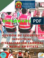 Gestión de Seguridad Industrial%2c Fiscalización Laboral y Medio Ambiente