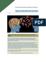 Aplicación Estratégica Del Desarrollo Humano Aplicando La Psicología Positiva