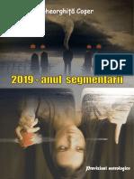 2019_anul_segmentarii.pdf