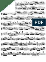 Köhler do maj.pdf