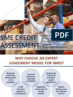Expert Judgment Credit Rating for Commercial & SME Banking Customers