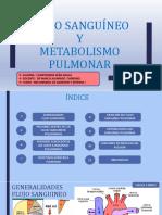 16 FLUJO SANGUÍNEO Y METABOLISMO PULMONAR CAMPOVERDE PEÑA