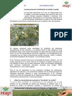 15. Uso de Fitorreguladores Para Promover Fructificacion en Tomate y Sandia