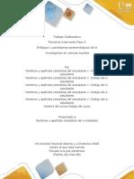 Anexo 4 Formato de Entrega