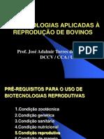biotecnologia slide completo de bovino.pdf