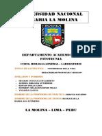 informe de biologia laboratorio (DIVERSIDAD DE LA VIDA EUBACTERIAS, PROTISTAS Y HONGOS) grupo, F2.docx